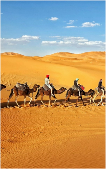 Merzouga Camel Trek with Night in Camp