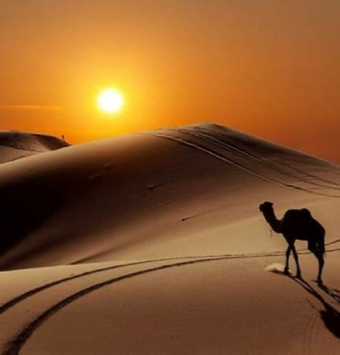 4 Day Tour from Marrakech to Erg Chebbi Sahara Desert