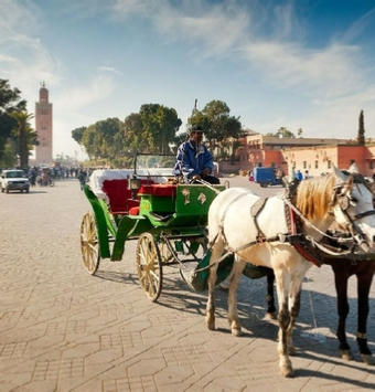Marrakech Horse Carriage Tour with dinner